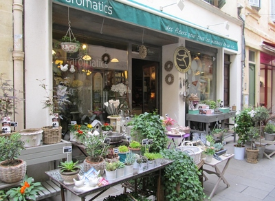 Arles fleuriste (2).JPG