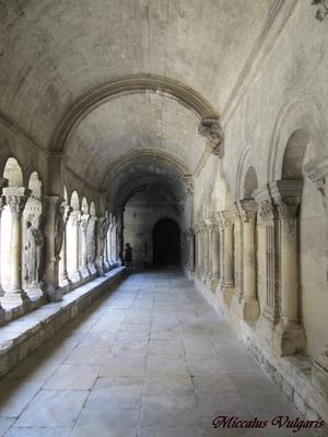 Eglise St-Trophime et son Clotre (4) MV.jpg