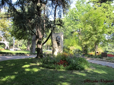 Jardin d'ete arles (2) MV.jpg