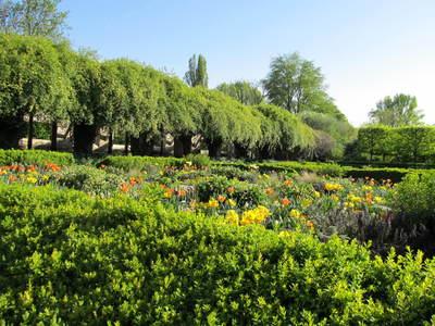 Parc de l'île Saint-Germain avril (3).JPG