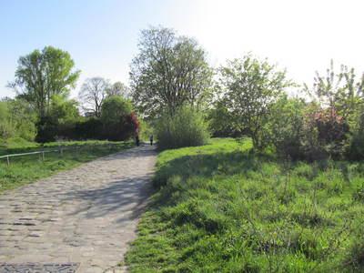 Parc de l'île Saint-Germain avril (5).JPG