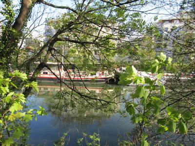 Parc de l'île Saint-Germain avril (6).JPG
