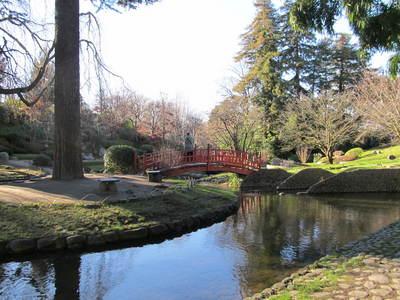albert kahn jardin japonais (15).JPG