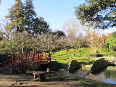 albert kahn jardin japonais (27).JPG