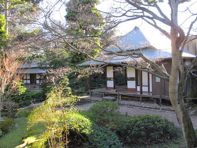 albert kahn jardin japonais (3).JPG