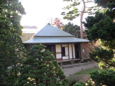 albert kahn jardin japonais (4).JPG