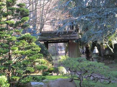 albert kahn jardin japonais (9).JPG