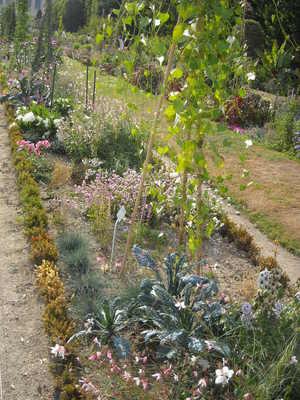 jardin des plantes (2).JPG