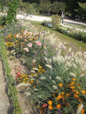 jardin des plantes (3).JPG
