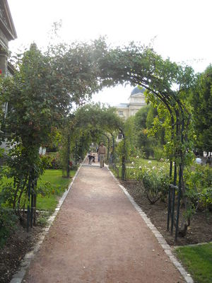 jardin des plantes (7).JPG