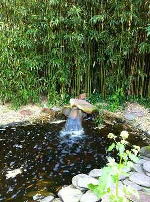 la mare aux oiseaux jardin.jpg