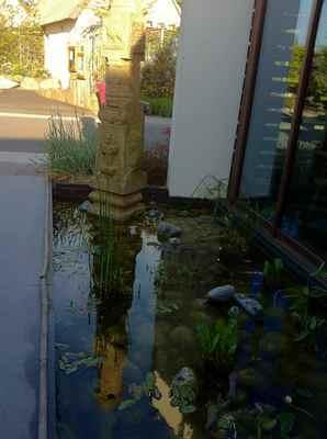 la mare aux oiseaux jardin 8.jpg